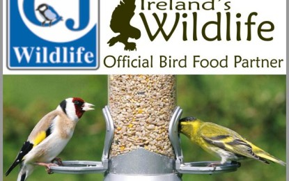 Ireland's Wildlife teams up with Europe's leading bird food specialist