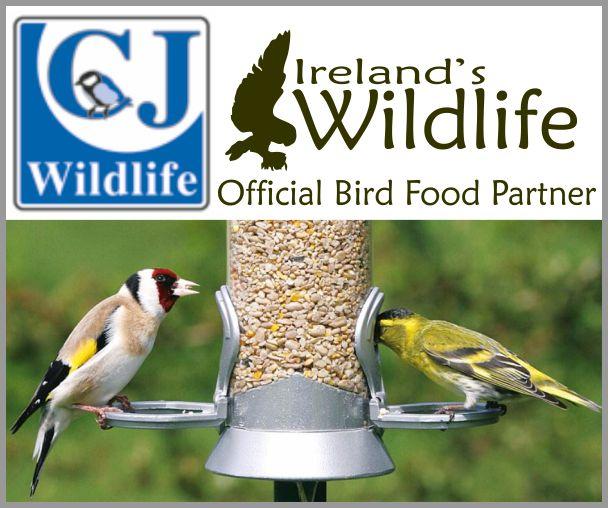Ireland's Wildlife teams up with Europe's leading bird food specialist