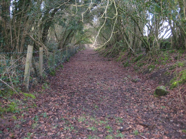 Funds approved for 1st phase of West Clare Railway Greenway
