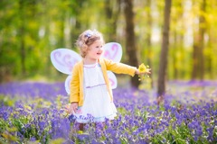 Fantastical Fairy Fest in Powerscourt Gardens