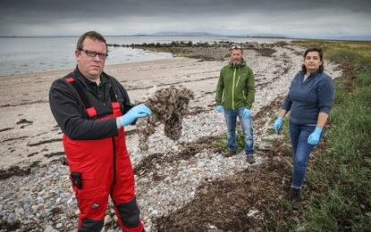 Wet Wipes and Sanitary Products found to be Microplastic Pollutants in Irish Waters